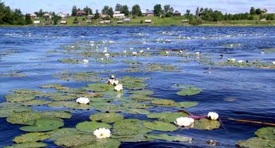Национальный парк Русский Север Вологодская област